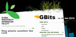 GBits38